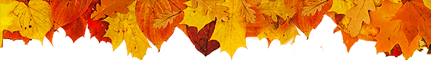 Fall Cosmetic Specials Leaves