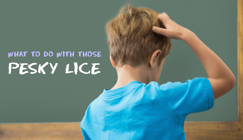 What To Do With Pesky Lice